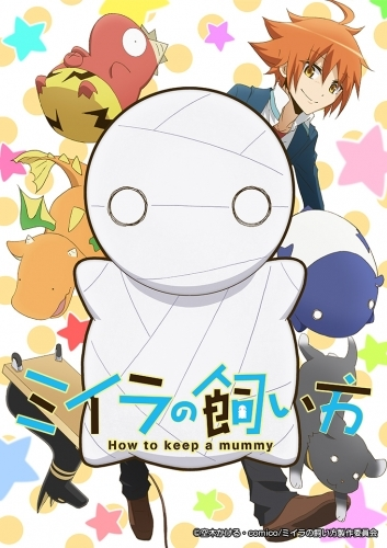 【DVD】TV ミイラの飼い方 2匹目