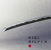 TV 銀魂. ED「SILVER」/RIZE 通常盤