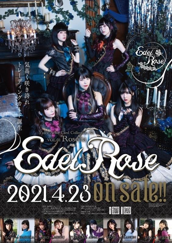 【グッズ-カード】Voice Actor Card Collection EX VOL.01 Roselia『Edel Rose』1BOX サブ画像4