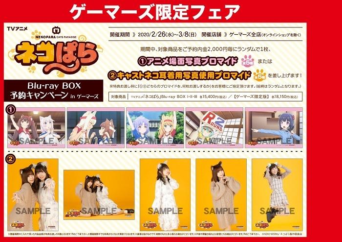 TVアニメ「ネコぱら」Blu-ray BOX 予約キャンペーン in ゲーマーズ画像
