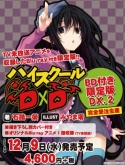 ハイスクールD×D DX(2) BD付限定版