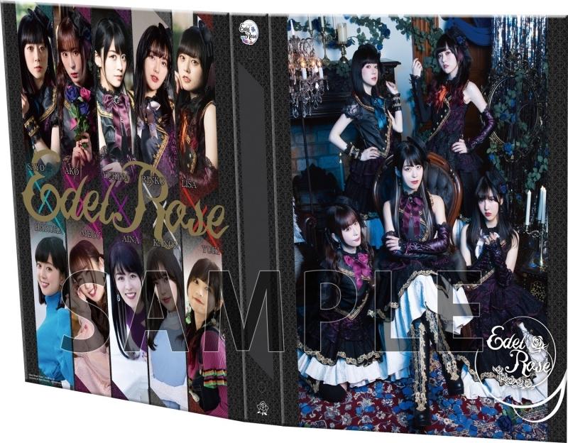 【グッズ-バインダー】Voice Actor Card Collection EX VOL.01 Roselia『Edel Rose』メイキングDVD&9ポケットバインダー