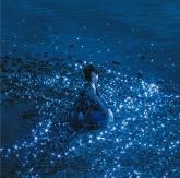 TV ソードアート・オンライン オルタナティブ ガンゲイル・オンライン OP「流星/約束」/藍井エイル 【通常盤】