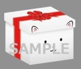 全巻購入特典:特製収納BOX