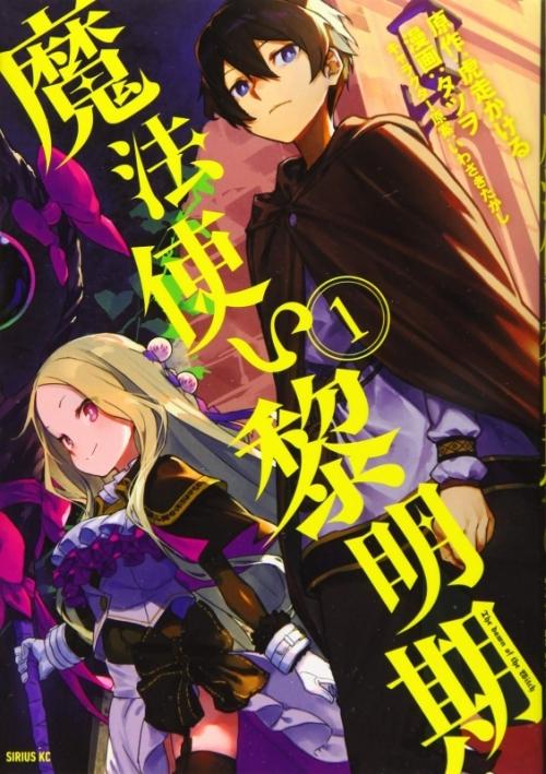 【書籍一括購入】魔法使い黎明期(1)~(3)コミック