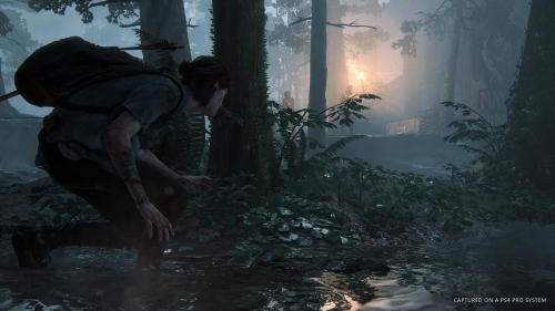【PS4】The Last of Us Part 2 通常版 サブ画像3