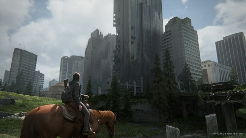 【PS4】The Last of Us Part 2 通常版 サブ画像9