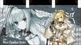 Fate/Grand Order 両面のれん 【C91アフターコミケ】