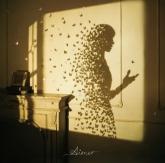 劇場版 Fate/stay night[Heaven's Feel] II.lost butterfly 主題歌/Aimer 通常盤